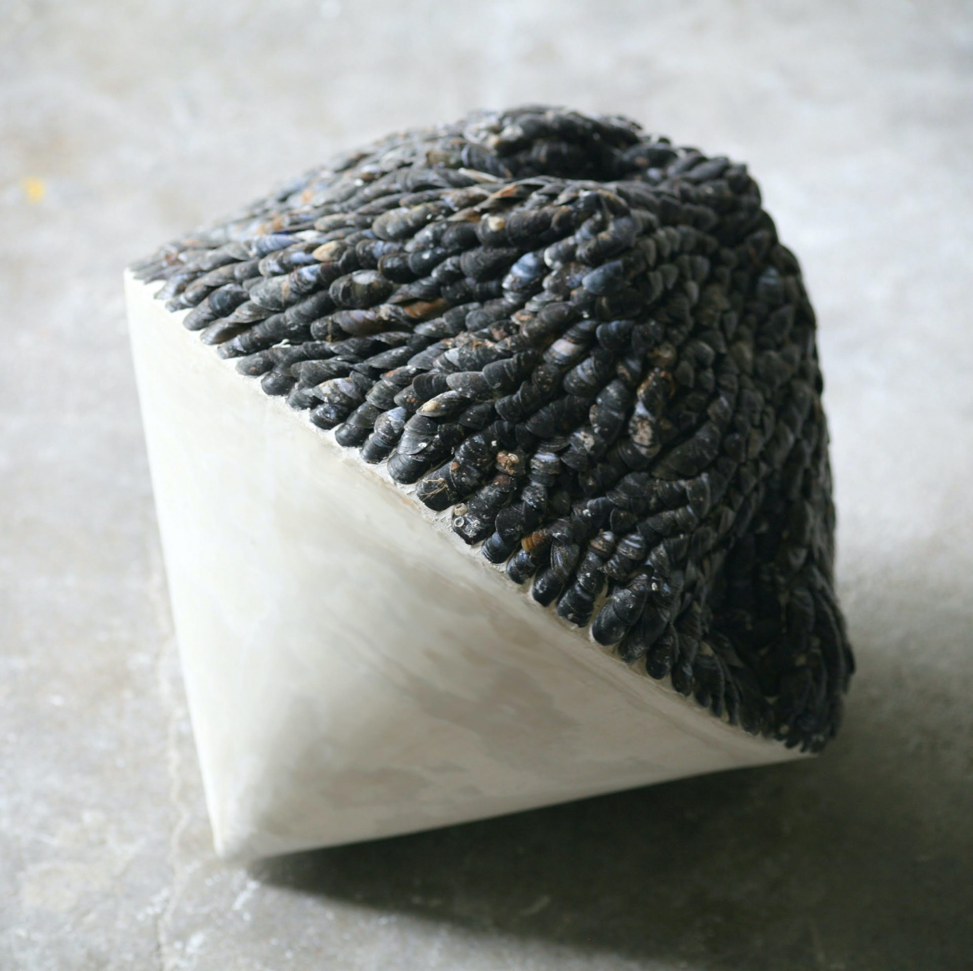 Stephanie Tudor Sculpture with mussels